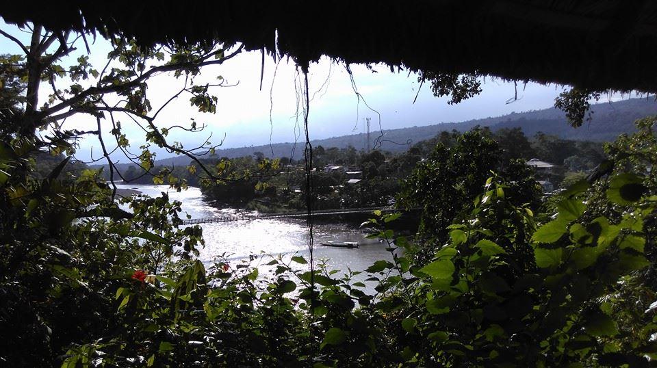 Misahualli - Rio Napo
