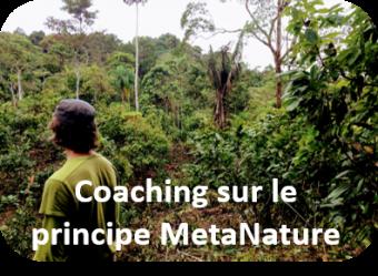 Coaching nature 1