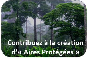 Creation aires protegees