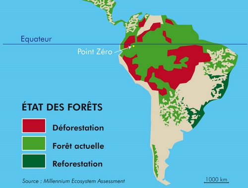 De forestation