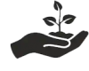 Main plante